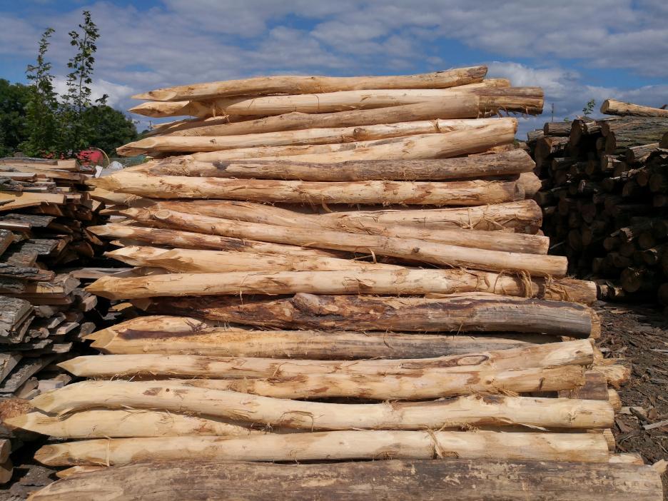 Kerítés-, játszótér-, stég-, vagy kertépítés? Akác oszlop a megoldás!