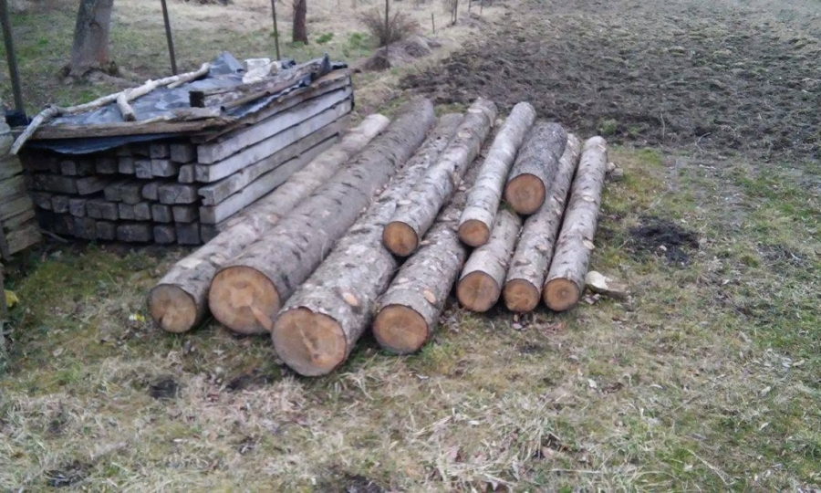 Tölgyfa tüzifa jellemzői